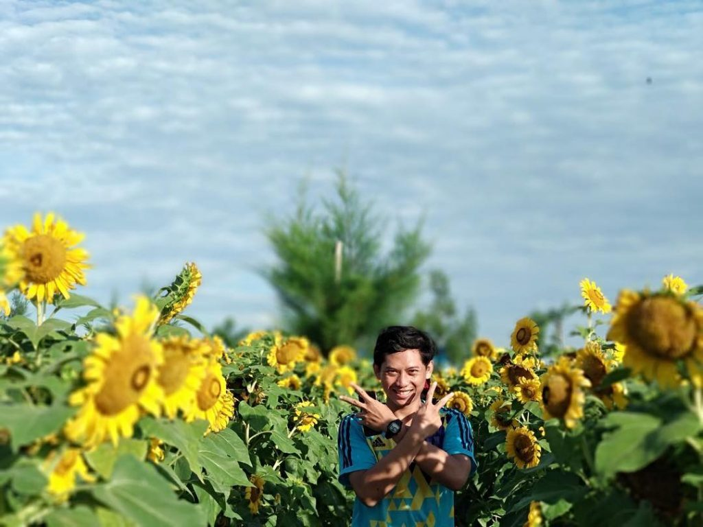 Taman Bunga Matahari (2)