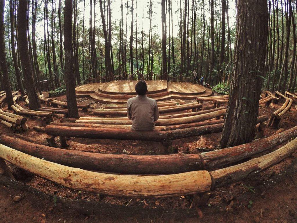 Hutan-Pinus-Mangunan