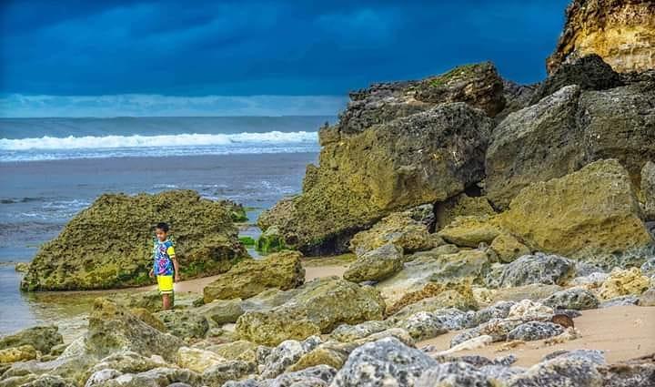 pesona pantai sepanjang (3)