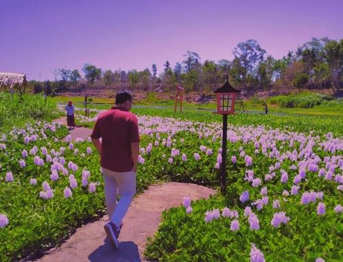 Kalinampu Natural Park – Wisata Ala Jepang di Jogja
